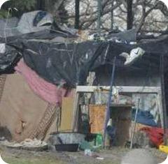 campamentos-Constitucion-