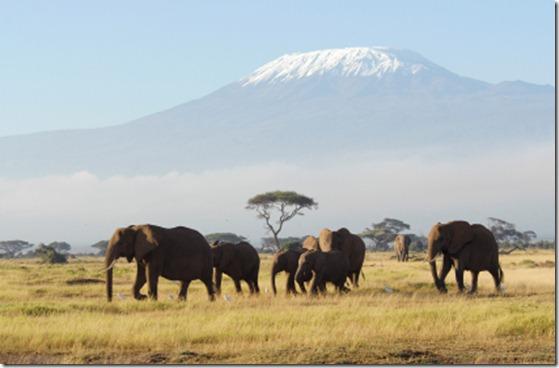 TanzaniaKilimanjaro