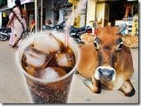 cow_cola