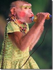 monkey_show_thailand_01