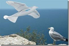 festo-smartbird-tb