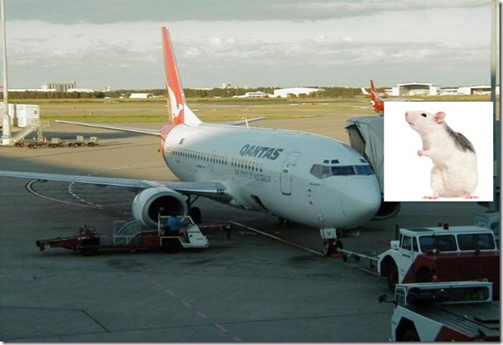 qantas_brisbane_airport