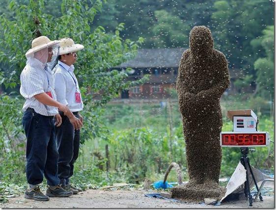 Concurso chino de 'barba de abejas'