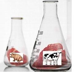 Carne cultivada en biorreactor