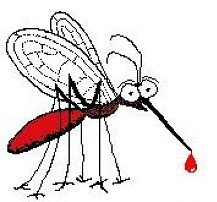 Por eso gustan los mosquitos de ti
