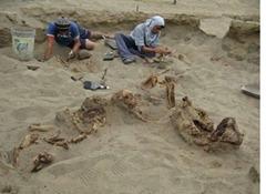 Hallan restos de niños sacrificados en Huanchaquito