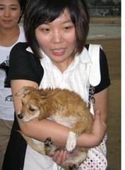 perrito chino maltratado