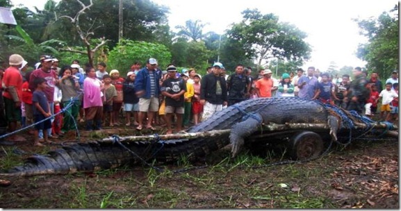 giant_crocodile_captured_in_philippines