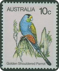 golden-shouldered-parrot