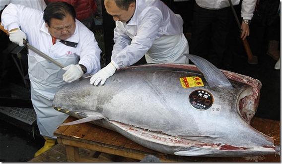 Kiyoshi Kimura compró el atún rojo más caro del mundo
