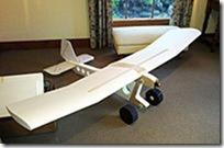 Avión no tripulado descubre 'un río de sangre' en Texas