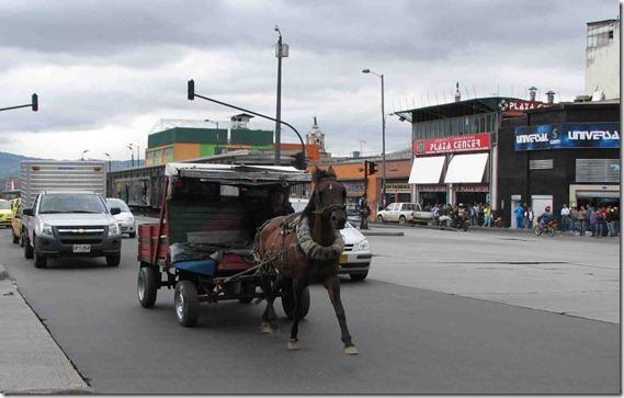 """""""Zorreros"""" de Bogotá pronto serán recuerdo del pasado"""