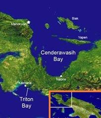 CENDERAWASIH BAY-