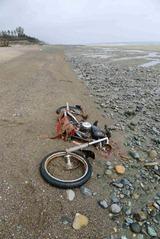 Encuentran en Canadá la moto que un japonés perdió durante el tsunami