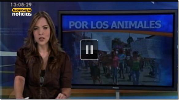 Protestan por envenenamiento de 25 mascotas en Robledo