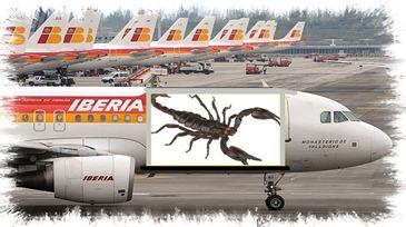 Iberia-Barajas