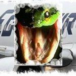 Serpiente en avión de Egypt Air