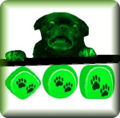 perro-pelota-tenis-
