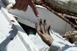 tumba en Hernani