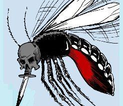 Suecos afectados en gran brote de fiebre del dengue en Tailandia