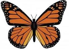 Piden a México, Canadá y EE.UU. acciones para salvar a la mariposa Monarca