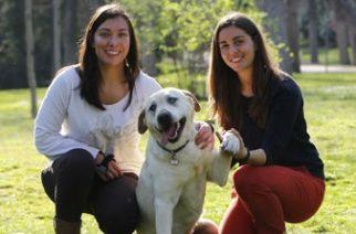Una medallista ciega parcial adopta a un perro invidente al que sus dueños querían sacrificar