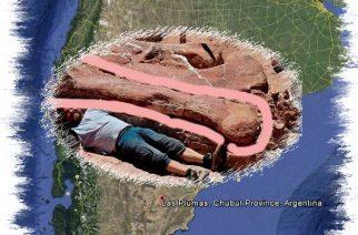Hallazgo en Chubut: un dinosaurio de 100 toneladas y 20 metros de altura