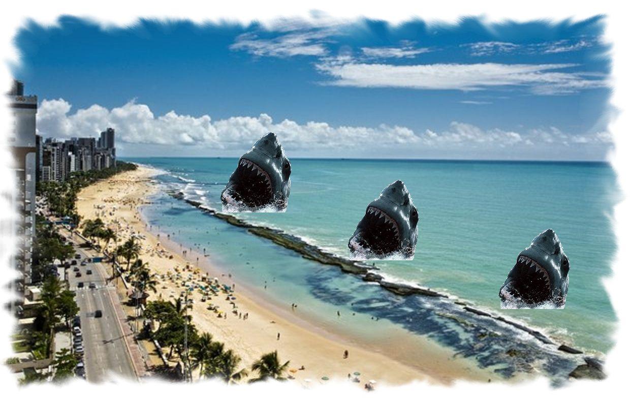 Las 14 playas ms peligrosas del mundo el rastreador de noticias altavistaventures Choice Image