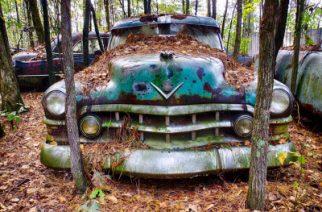 OLD CAR CITY: El mayor cementerio de coches del mundo