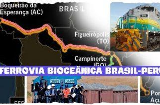 Ferrovia Bioceânica (EF-246, EF-354)