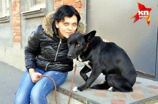 """""""SHAVI"""", la perra rusa que caminó unos 300 km para volver a la dueña que la rescató"""