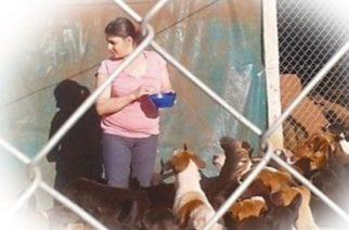 Cuida a más de 150 perros en su casa y pide habilitación comunal