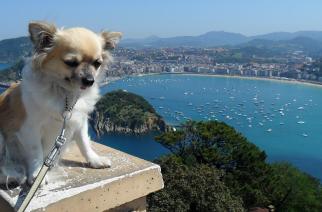 Las 25 mejores playas del mundo , segun TripAdvisor