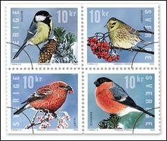 vinter fåglar