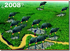 yasuni2008
