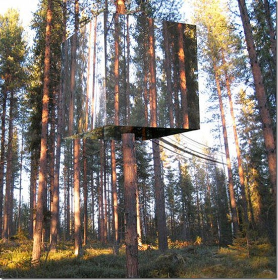 tree-hotel-1_OTBE7_58