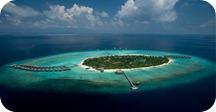 H THE BEACH HOUSE Maldivas