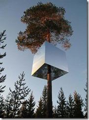 Tree-Hotel-Shaped-Box