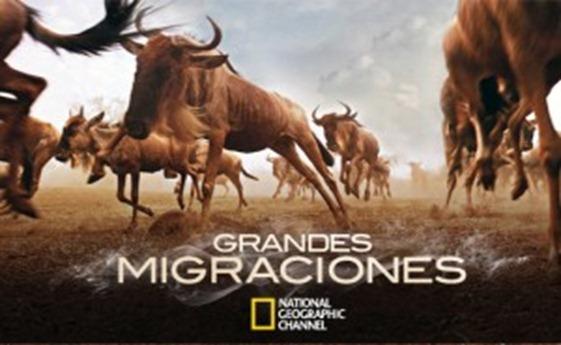 grandesmigraciones_natgeo-300x193