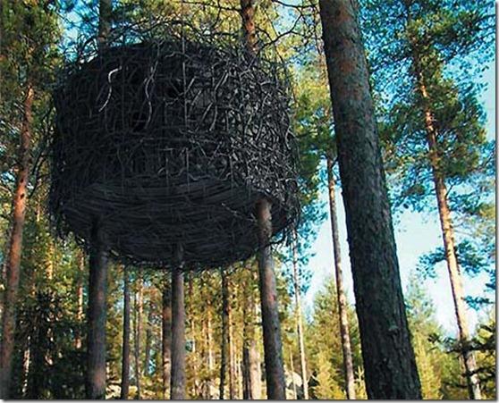 tree-house-hotel2