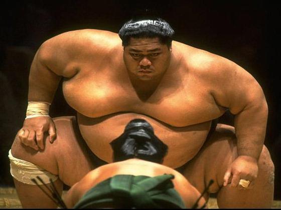 sumo-5