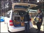 japan_animal_rescue_packing