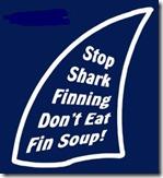 stop shark finning 003