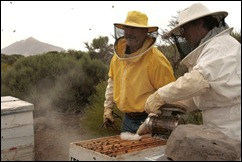 apicultores teide foto Cristobal García