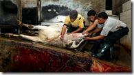 jakarta-slaughterhouse