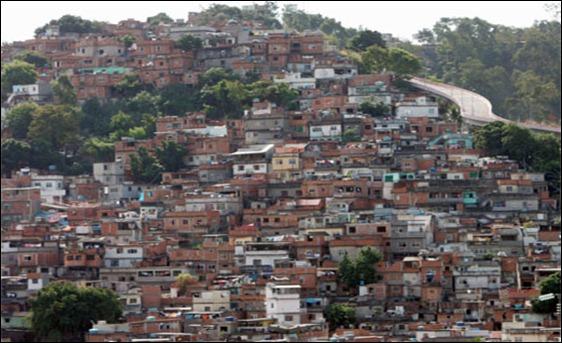 mangueira_cmoraes