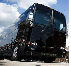 bus--6