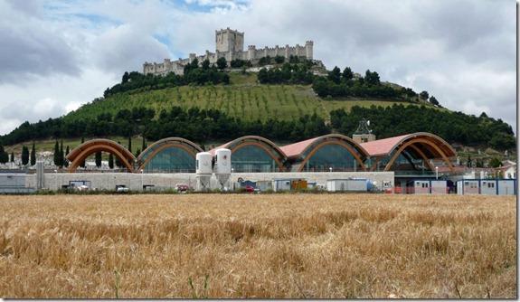 Bodega Protos - castillo
