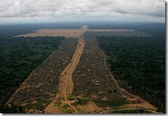 desmatamento-da-amazonia1