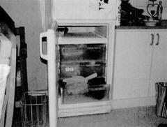 Congelador donde la mujer quitó la vida a los gatitos en Kalmar
